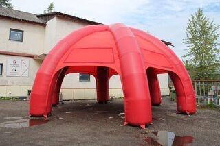 10x10m teltta