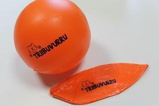 Rantapallo Triibuvurru
